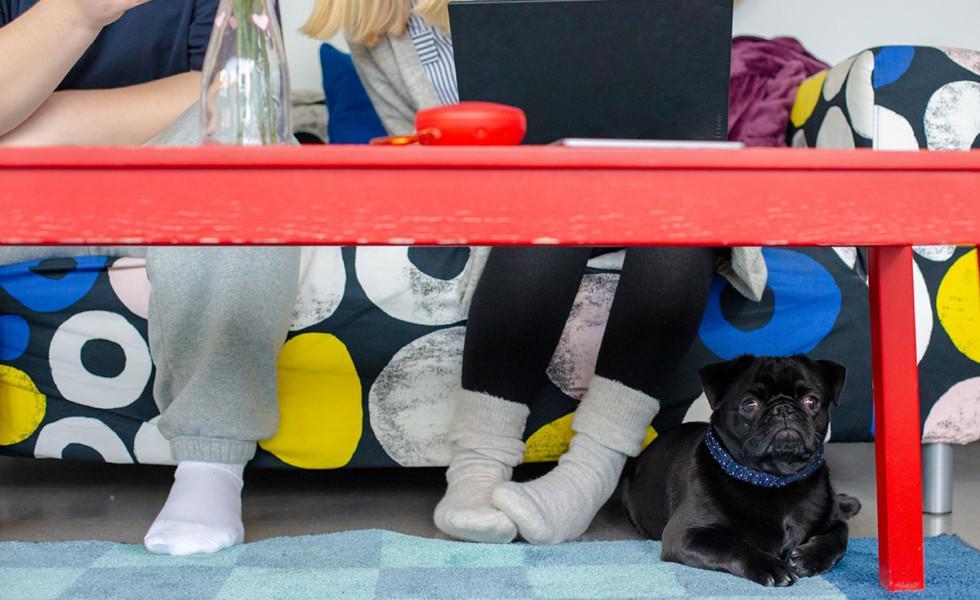Nuoria värikkäällä sohvalla pöydän ääressä.